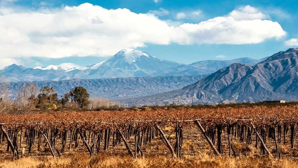 Wine regions of Argentina