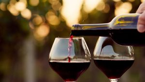 comprehensive guide to red wines