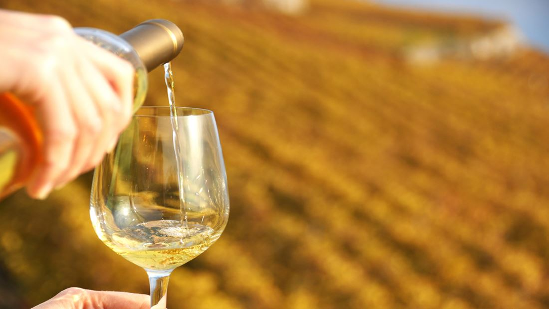 orange wine region