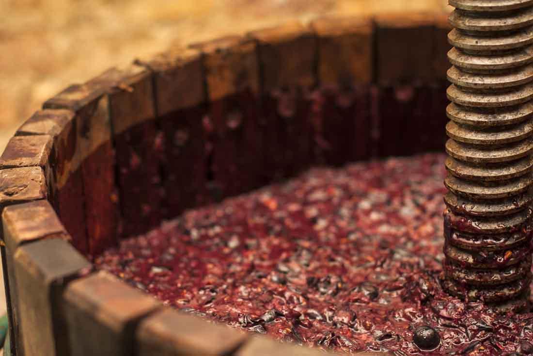fermentation impact wines flavours